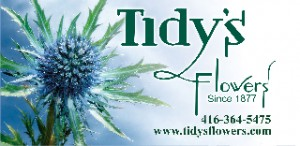 Tidy's Flowers Logo